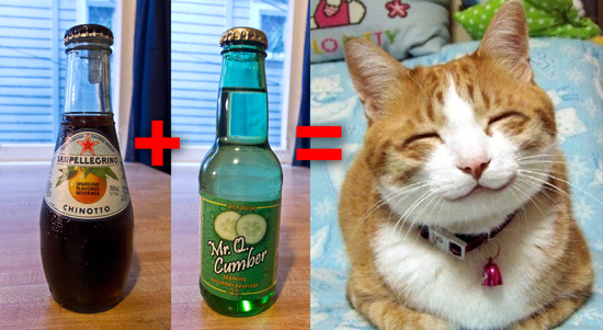 Chinotto Cucumber happycat
