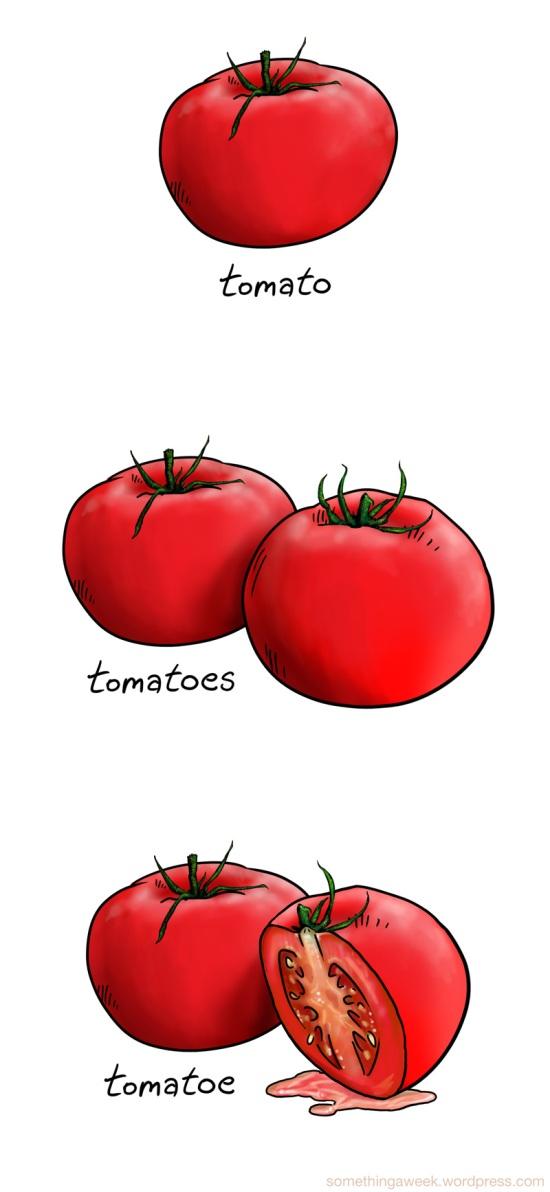 tomato, tomatoes, tomatoe